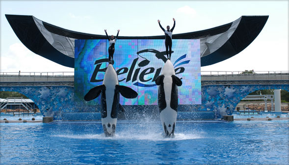 SeaWorld Ticket Discounts Florida